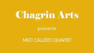 Meet Callisto Quartet