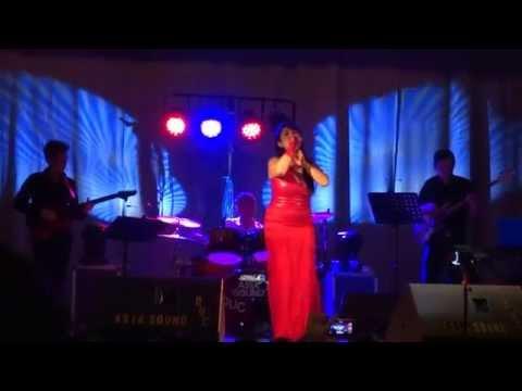 Lam Thuy Van - Anh con no em (Live concert 23/01/2015 Bxl)