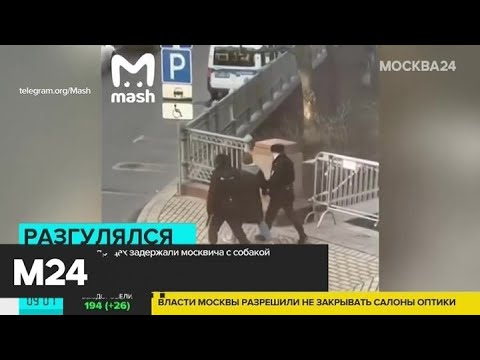 Появилось видео задержания москвича, который выгуливал собаку - Москва 24