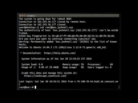 George | BHost – VPS Hosting With Unmetered Bandwidth