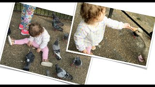 LITTLE GIRL / HAVING FUN WITH DOVES AND DUCK / NIÑA JUGANDO CON PALOMAS Y CON EL  PATO