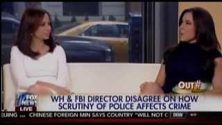 Fox Panel: We Don