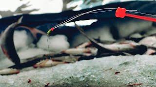 ДИКАЯ РЫБАЛКА В ГЛУХОЗИМЬЕ Рыба в ШОКЕ От Такого Клёва Зимняя Рыбалка 2021
