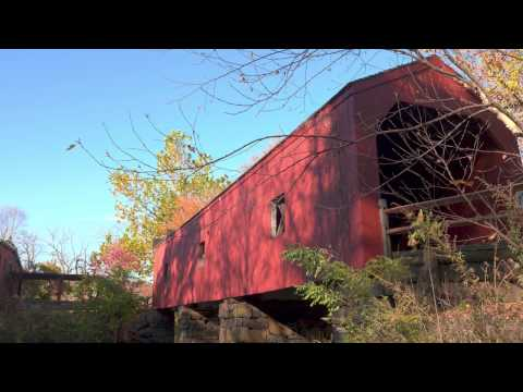 Pansonic GH4/Atomos Shogun Inferno HDR 4K Video: New England Forest in Late Fall