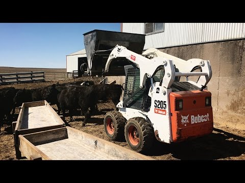 Playing Around With The Rental - Bobcat S205 - YouTube