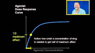 Agonist Dose Response Curves