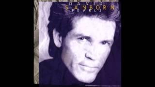David Sanborn - Smoke Gets in Your Eyes