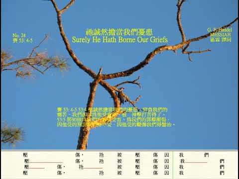 祂誠然擔當我們憂患 區霖 譯詞 Surely He Hath Borne Our Griefs Messiah No 24 by Handel In Chinese