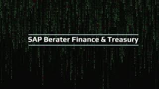 SAP Berater Treasury & Finance