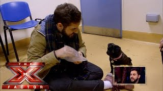 It's A Pug's Life For Andrea   The Xtra Factor Uk   The X Factor Uk 2014