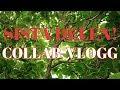COLLAB-VLOGG 4/4: Sista dagen med Yennie :(