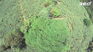 GUADELOUPE ISLANDS VOL.3 (4K)