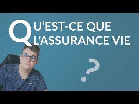 Qu'est ce que l'Assurance Vie ? - Parlons Épargne
