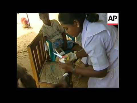 Village sanitised; medical aid; refugee camp in rebel-held territory