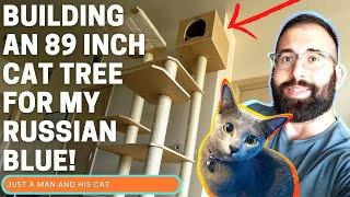 Building The TALLEST Cat Tree I Could Find For My Russian Blue, Favor!