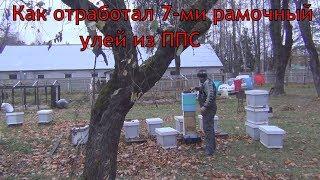 Как отработал 7-ми рамочный улей из ППС Обзор 7 ми рамочного улья от канала Белорусское Пчеловодство