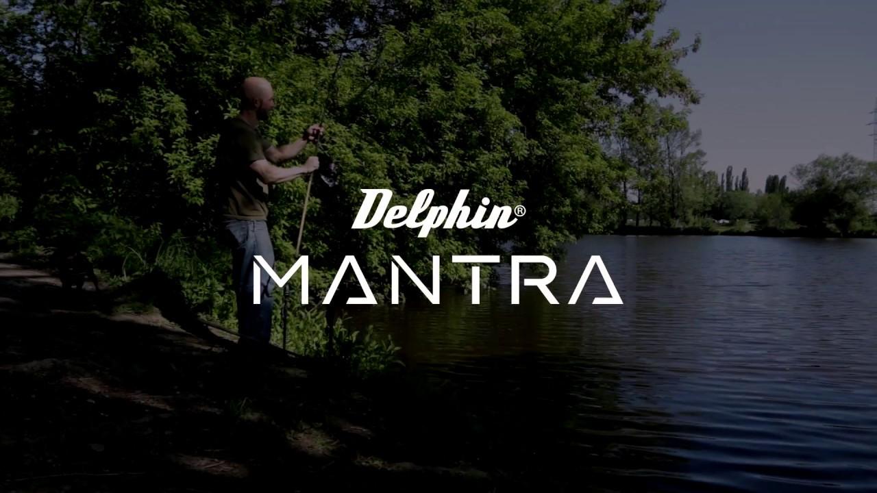 Delphin Spiel
