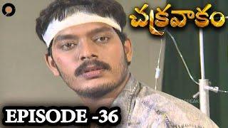 Episode 36 | Chakravakam Telugu Daily Serial