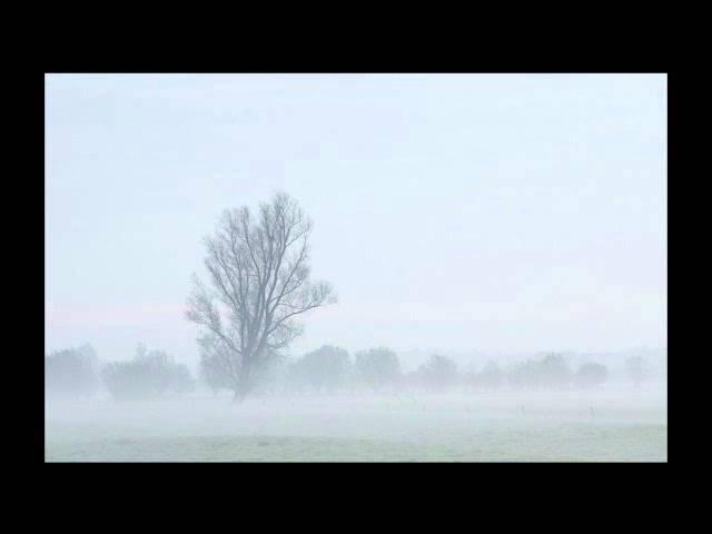 Boudewijn De Groot - Het geluid van stilte
