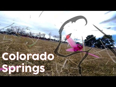 Jakalas - Colorado Springs