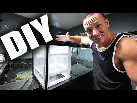 HOW TO: Build a simple aquarium sump | The King of DIY