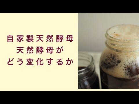 【自家製天然酵母】天然酵母はどんな風に変化していくのか? フルーツ酵母 自家製天然酵母 パン教室 教室開業 大阪 奈良 東京 名古屋 オンライン講座
