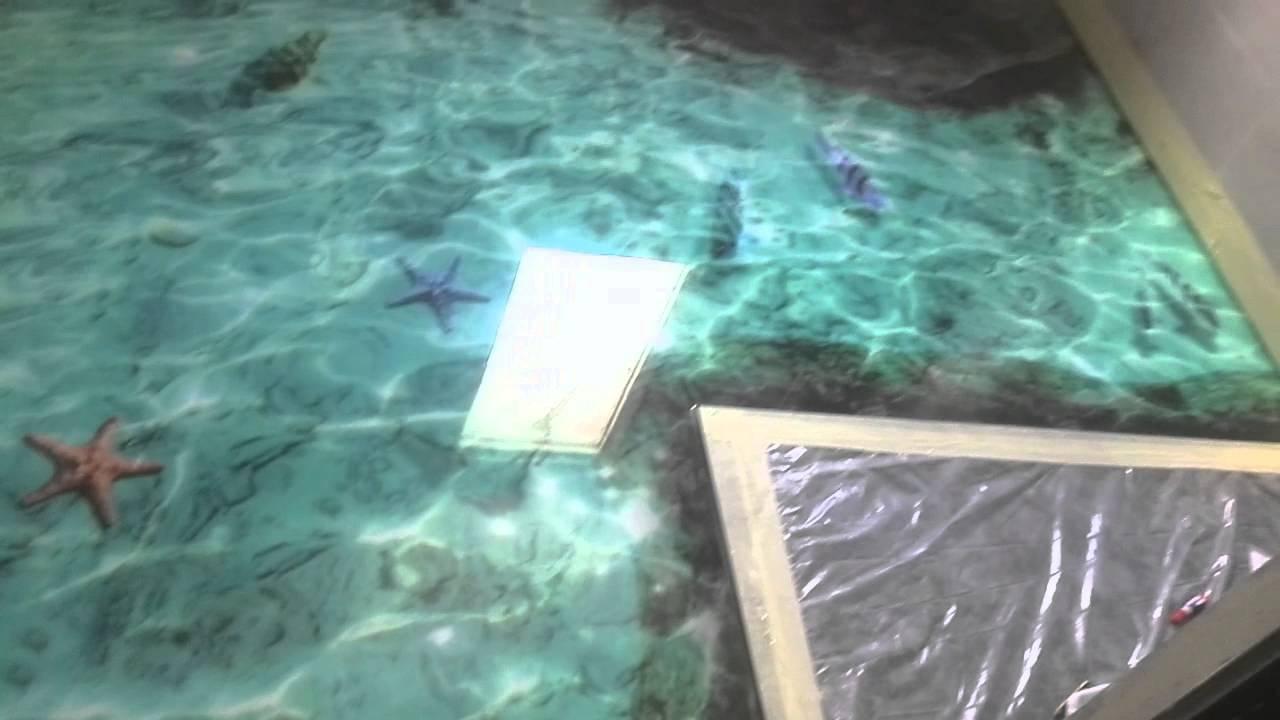 Suelo efecto 3d peces y rocas youtube for Suelos 3d autonivelante