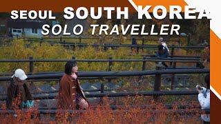 Seoul Travel by MON