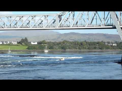 Boat at Falls of Lora and Connel Bridge