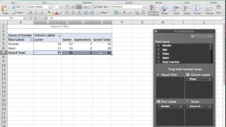 Contingency Table, cross tabulation, frequency tables (Mac Excel)