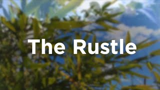 The Rustle - sounds of leaves, grass, trees blowing in the wind