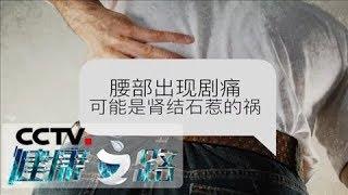 《健康之路》 20200328 肾结石哪里来  CCTV科教