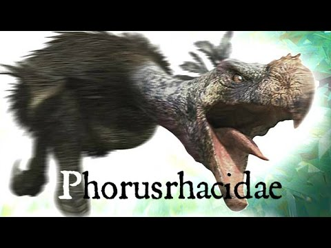 "Phorusrhacidae ""Terror Bird"" Documentary-Huge prehistoric bird"