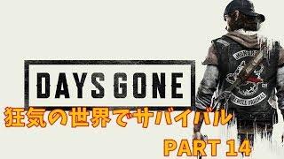 【days Gone】狂気の世界でサバイバル!part14【デイズゴーン】