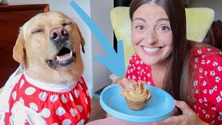 CANDY CHALLENGE WITH OUR DOG! Don't Eat It!