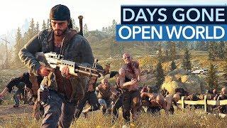 Die beste PS4-Open-World für 2019?