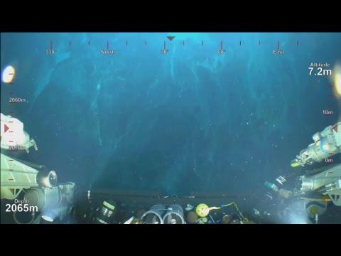 ROV SuBastian Dive 073 - Orona Atoll - Deep Sea Corals of PIPA