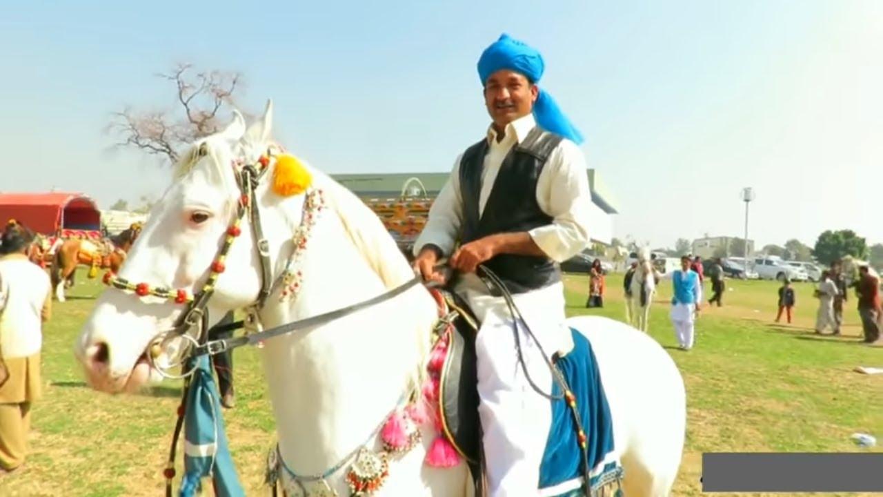 Documentary on Neza Bazi | Sport Complex Islamabad Neza Bazi 2018 | Desi  Horses | Tent Pegging