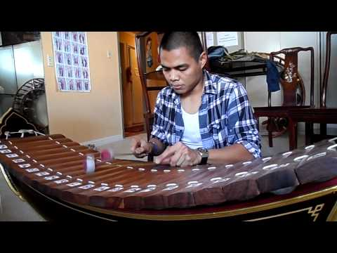 Traditional South East Asian musical instrument: Ranard