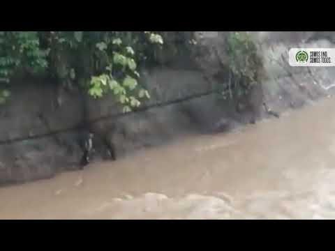 Acción Valerosa de la Policía en Piamonte Cauca