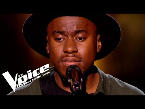 Stromae - Formidable | David Té  | The Voice 2019 | Blind Audition