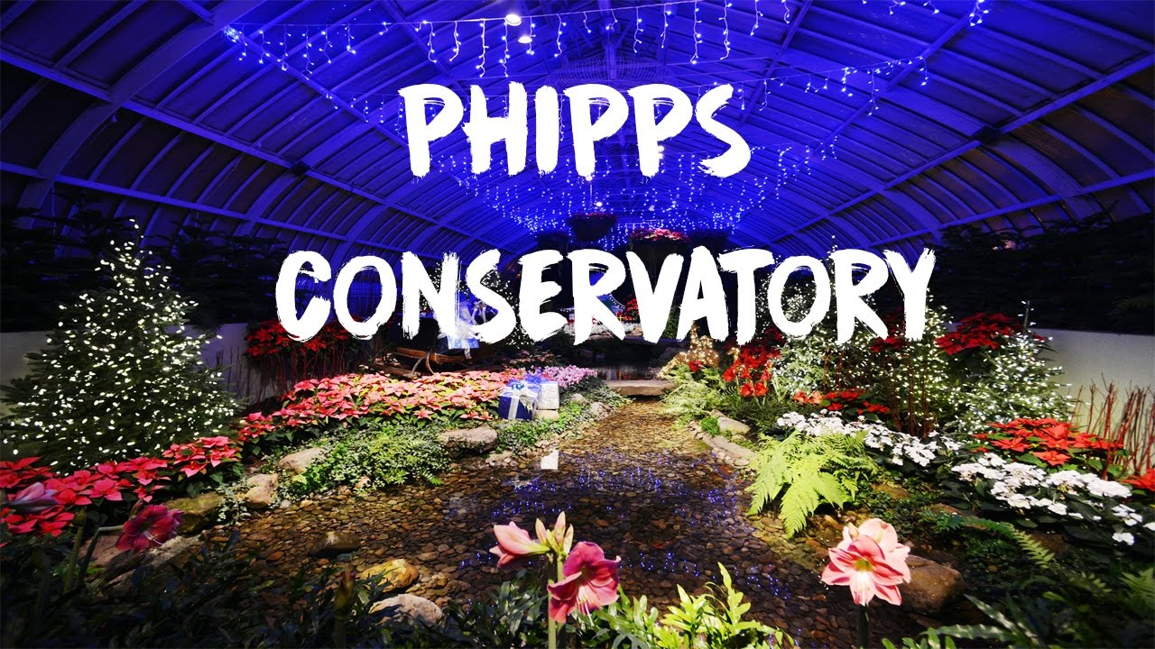 Phipps Conservatory Christmas 2019.Phipps Conservatory Christmas Pittsburgh Short Film 2016