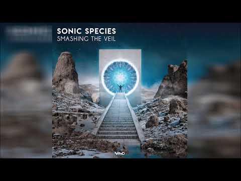 Sonic Species - Smashing The Veil ᴴᴰ