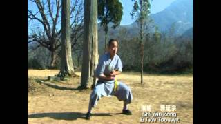 Repeat youtube video Shaolin Tai Zu Chang Quan 少林太祖长拳