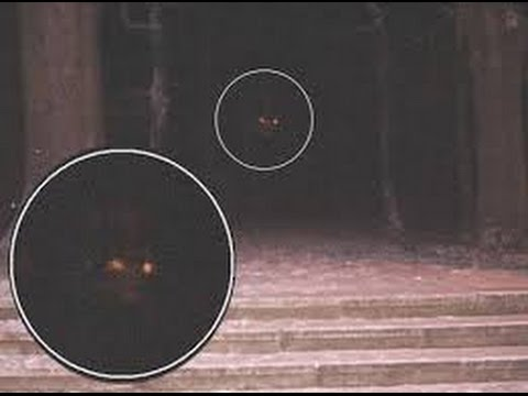 What Does The Paranormal Activity Demon Look Like