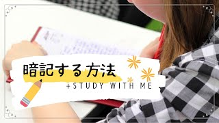 勉強風景*暗記のやり方 ||Christmas Holidays|| Study With Me