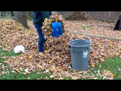 Fastest Way To Pick Up Leaves Doovi