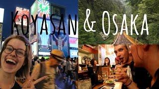 From chillin' to chicken hearts in KOYASAN & OSAKA | Japan vlog 4