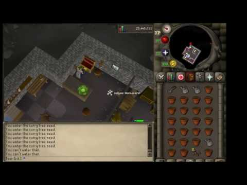 OSRS Passive Money Making 500k profit from Saplings