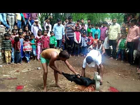 Bhagwan kis